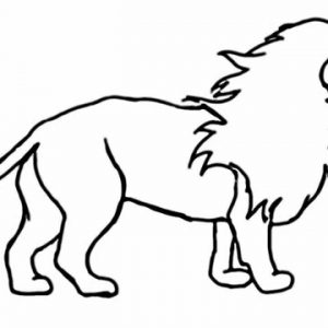 300x300 Lion How To Draw A Lion Easy Step By Adult