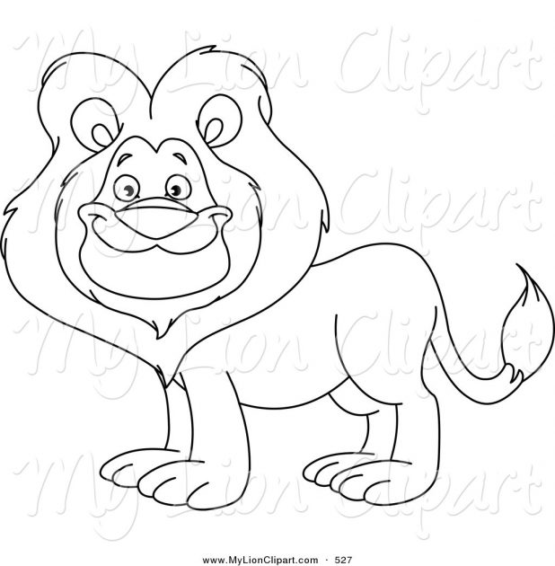 618x630 Adult Lion Drawing Outline Outline Of Lion Head Drawing. Lion