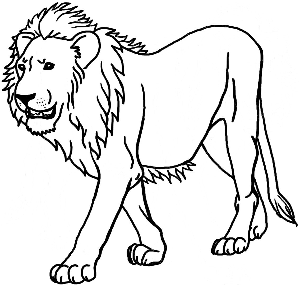 1135x1080 Drawing Coloring Page Of A Lion 98 In For Kids With Coloring Page