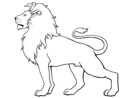 440x330 Coloring Pages Draw A Lion For Kids View Larger Coloring Pages