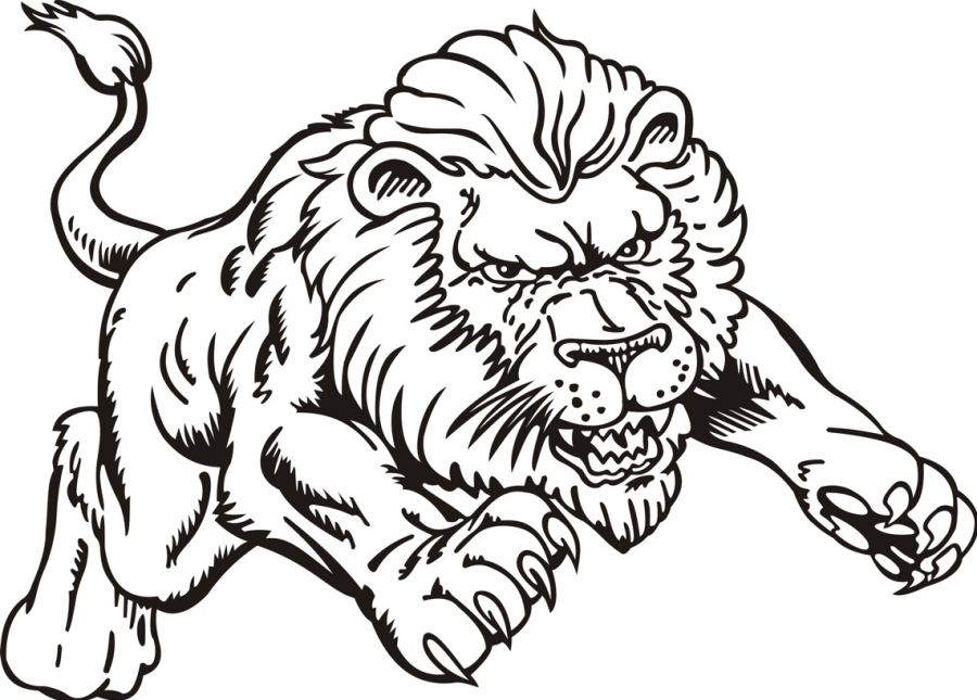 900x645 Lion Coloring Pages Colouring For Good Draw Print Kids Coloring