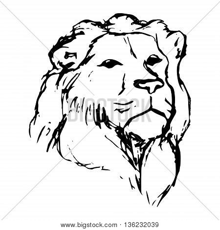 450x470 Graphic Image Lion. Lion Head On Vector Amp Photo Bigstock