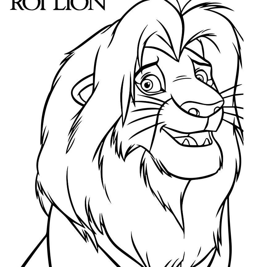 820x864 Lion Head Coloring Pages Free Printable Animals For Adults