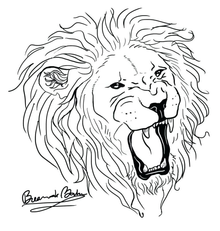 768x806 Lion Drawing Outline