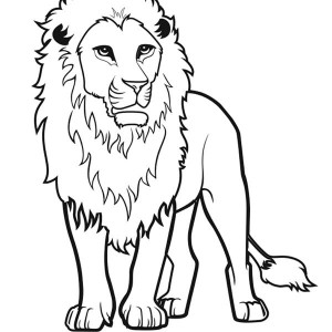 300x300 How To Draw A Lion Coloring Page Color Luna