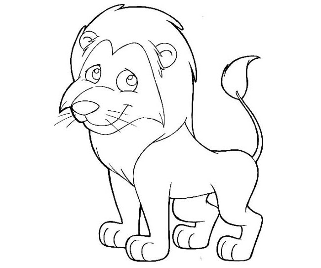 How to draw a lion cub cubs by safari animals