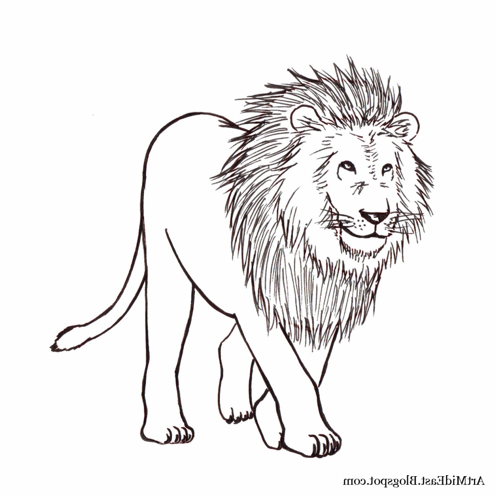 1024x1024 Easy Drawing Of Lion