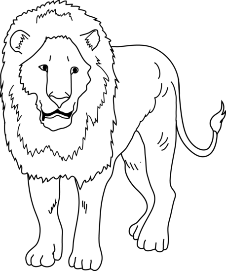 458x550 Lion Black And White Clipart Lion Black And White Lion Outline