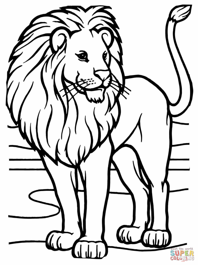 768x1024 Lion Drawing Outline Lions Coloring Pages Free Coloring Pages