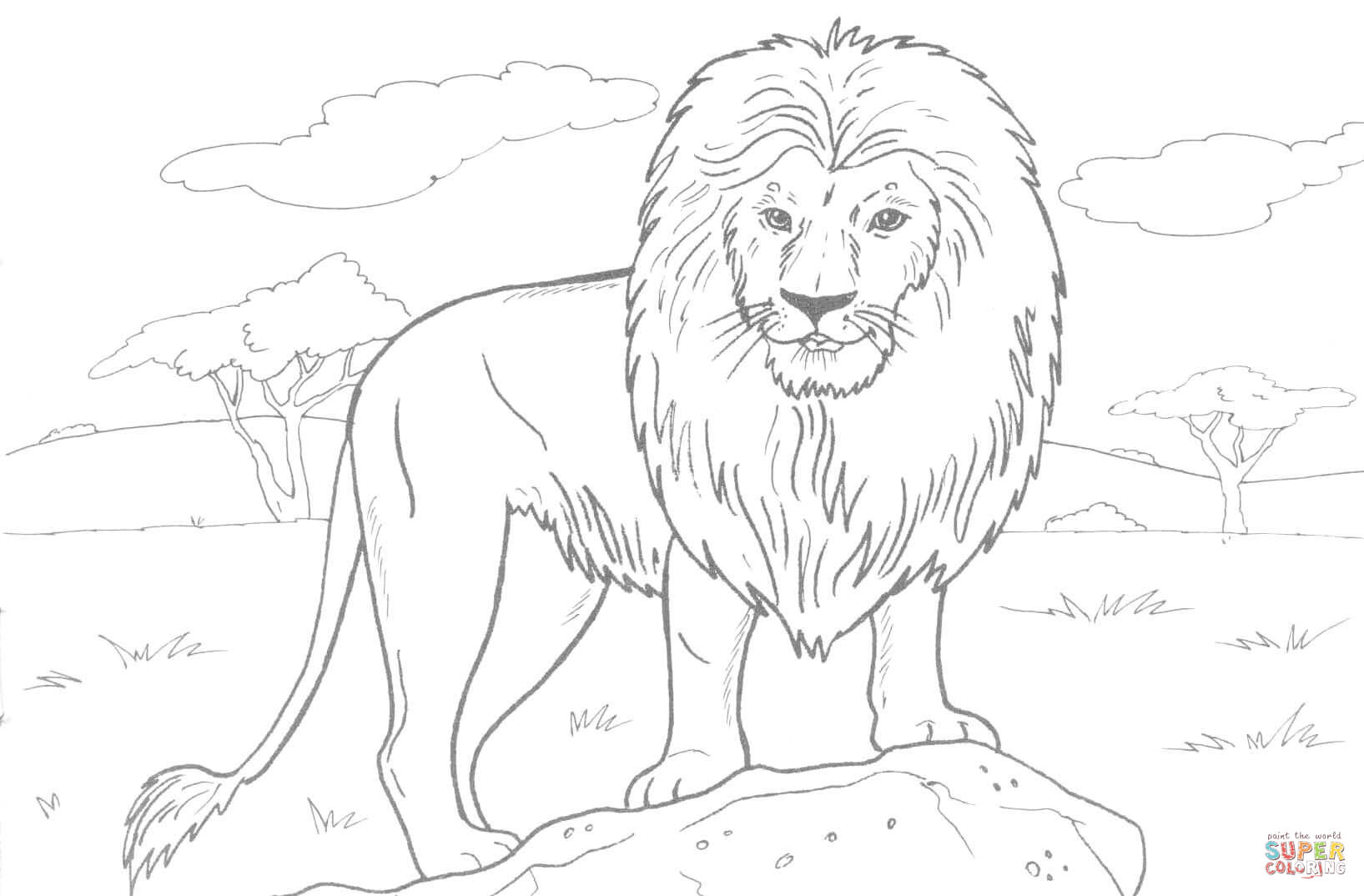 1635x1074 Lion Outline Coloring Page Free Download