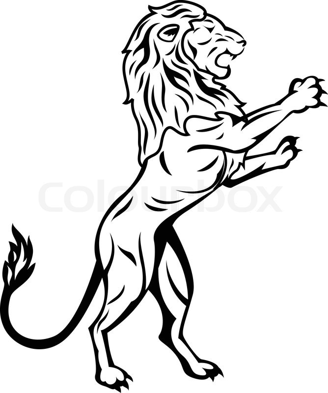 668x800 Outline Angry Lion Tattoo Design In 2017 Real Photo, Pictures