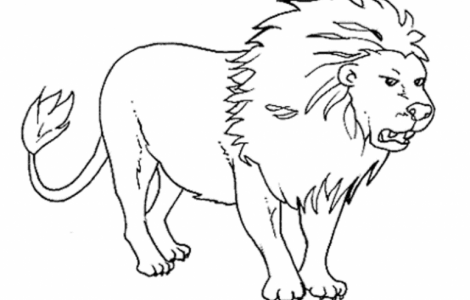 470x300 Outline Drawings For Colouring