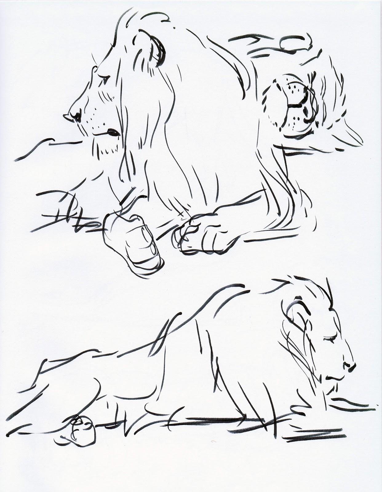 1242x1600 Deja View Drawing Lions