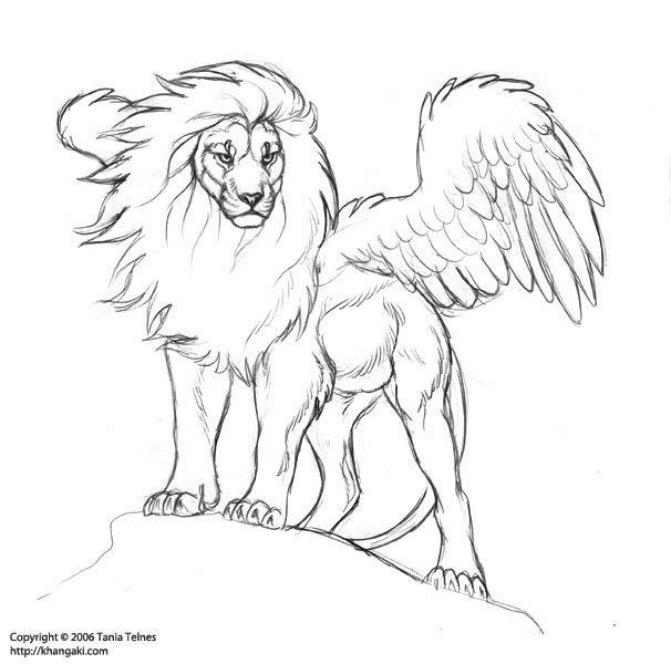 606x600 Drawn Lion Sketch