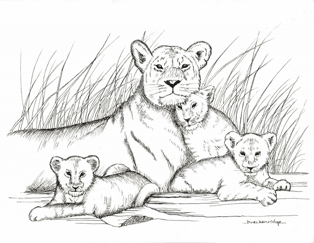 1024x794 How To Draw A Baby Lion Ba Lion Drawing 80298 Dfiles