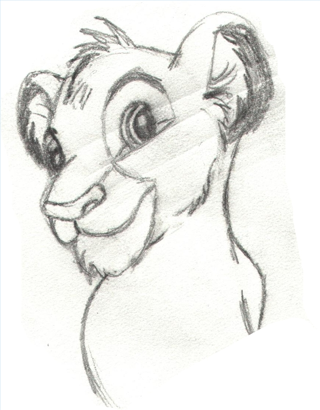 625x800 Lion King Drawing Face