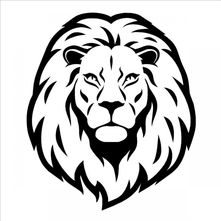 750x750 Coloring How To Draw Lion Face Dragoart With How To Draw