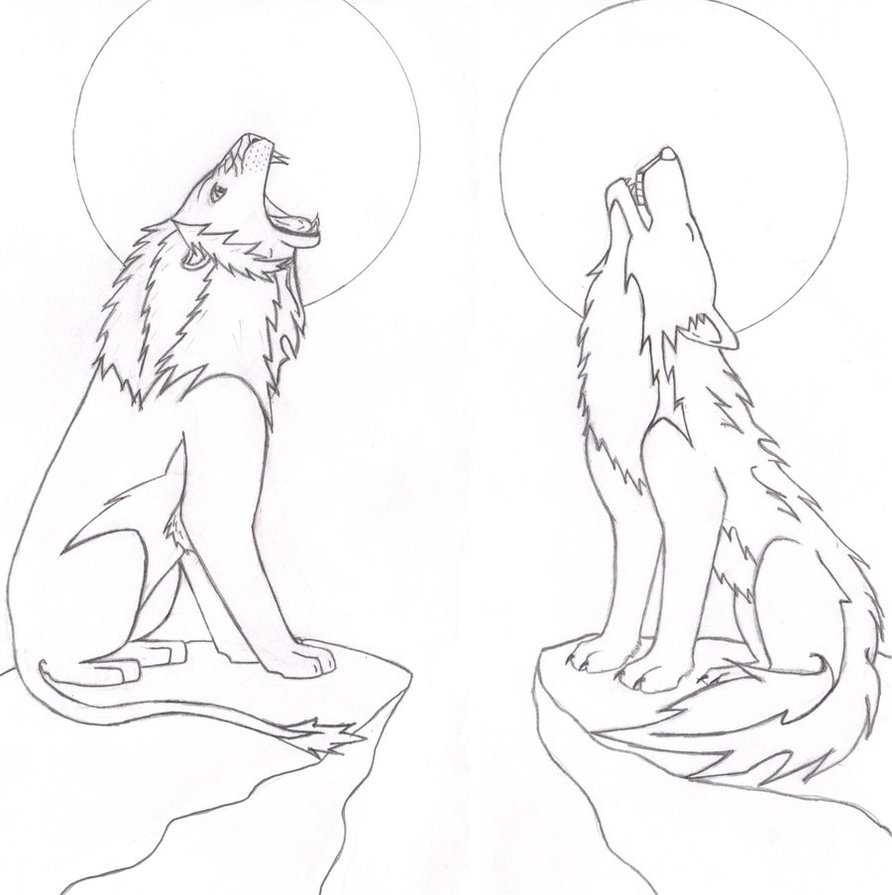 892x895 Roaring Lion And Howling Wolf By Strife6