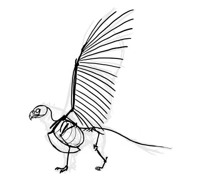 700x631 How To Draw A Griffin