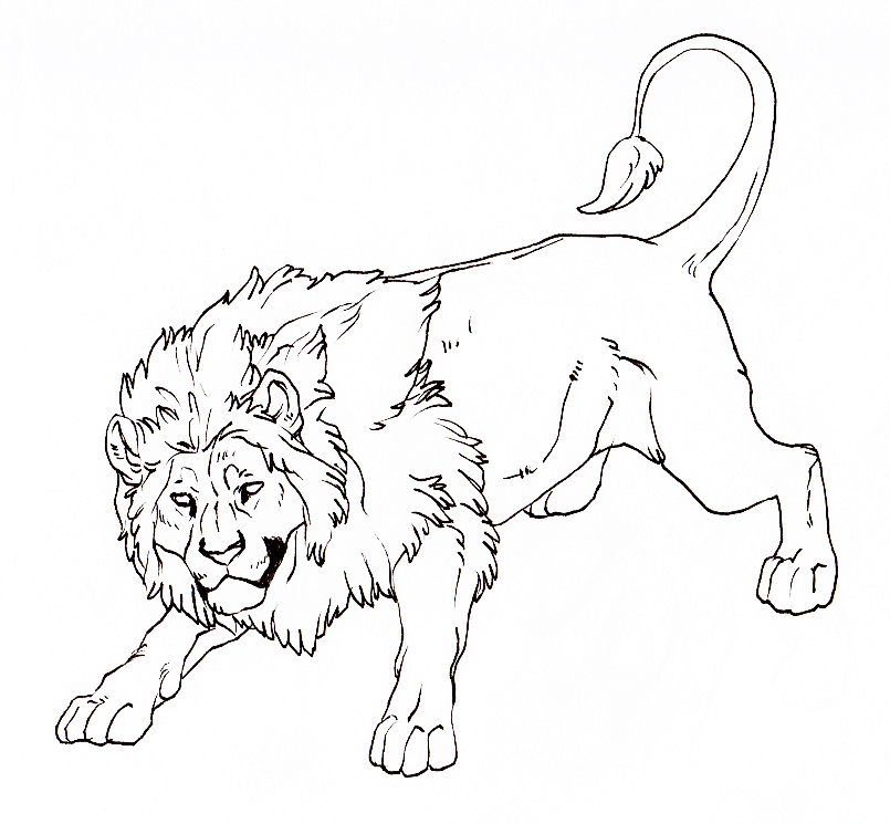 805x745 Lion Lineart By Hire Me