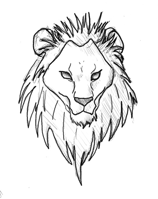 544x684 Simple Lion Face Drawing
