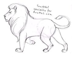 236x188 How To Draw A Lion Step By Step 4 Draw Lions