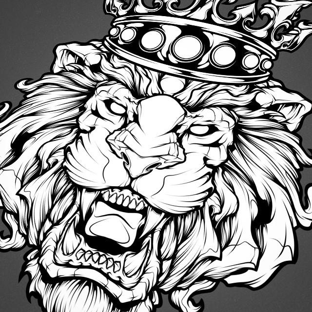 640x640 Absorb81 New Lion Illustration.