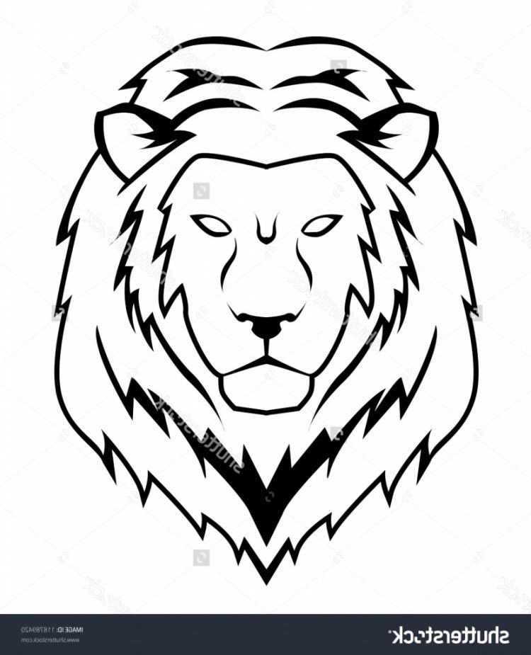 750x925 How To Draw Lion Face Roaring Step By Step Tags How To Draw