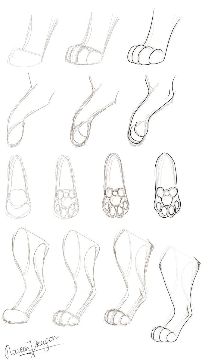 671x1191 Paw Tutorial 2 By Nairondragon On The Lion King