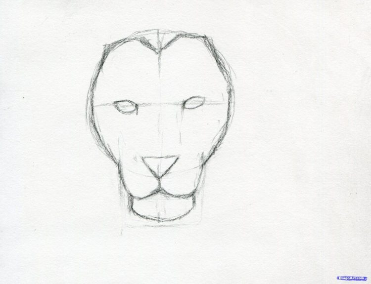 750x575 Coloring How To Draw A Lion Face Roaring Step By Step