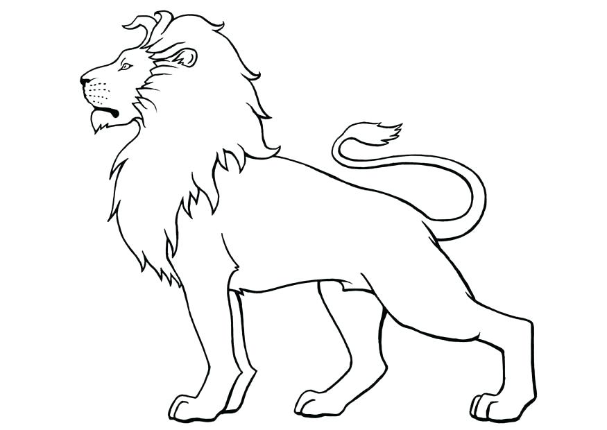 875x620 Lion King Coloring Pages Kovu Page How To Draw A Best Coloring