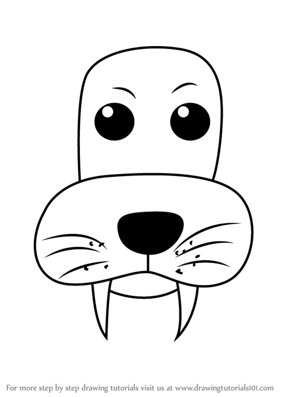 566x800 Step By Step How To Draw A Sea Lion Face For Kids