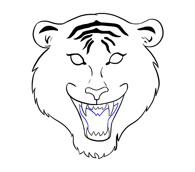 678x600 Best 25 Tiger Face Drawing Ideas On Lion Face Drawing