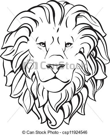 382x470 Simple White Lion Photography