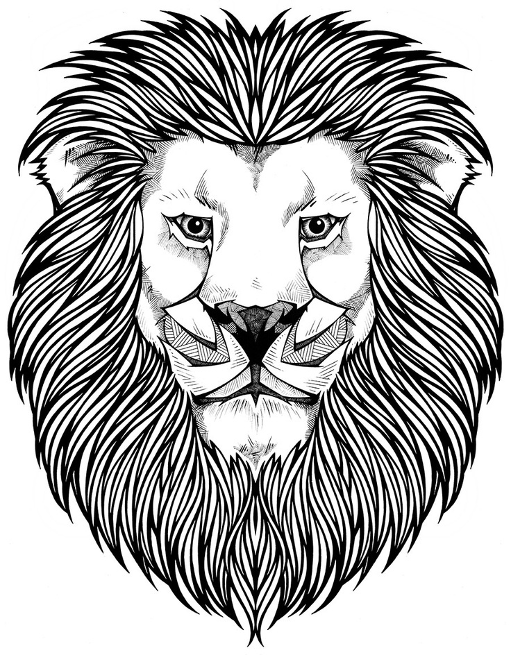 736x944 Adult Coloring Pages Lion Printable In Good Draw Printable