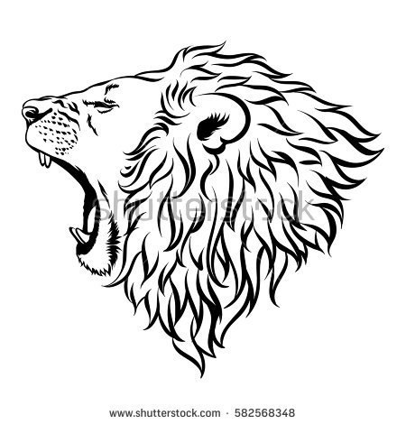 450x470 Drawn Lion Illustration