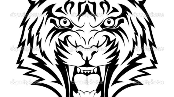 570x320 Simple Tiger Face Drawing