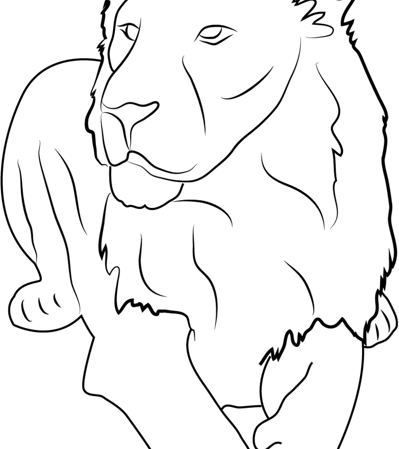 800x900 Asian Lion Coloring Page Printable Free Preschool In Good Draw