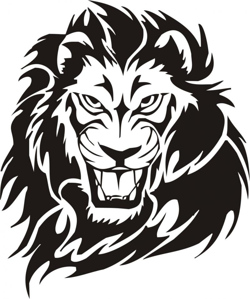 800x955 Lion Face Drawing Clipart