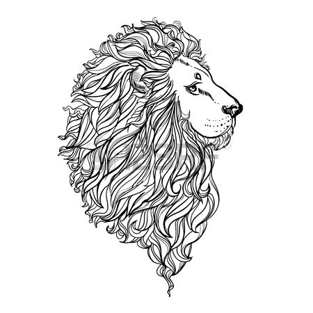 450x450 Illustration Of Doodle Lion And Woman With Curly Hair On White