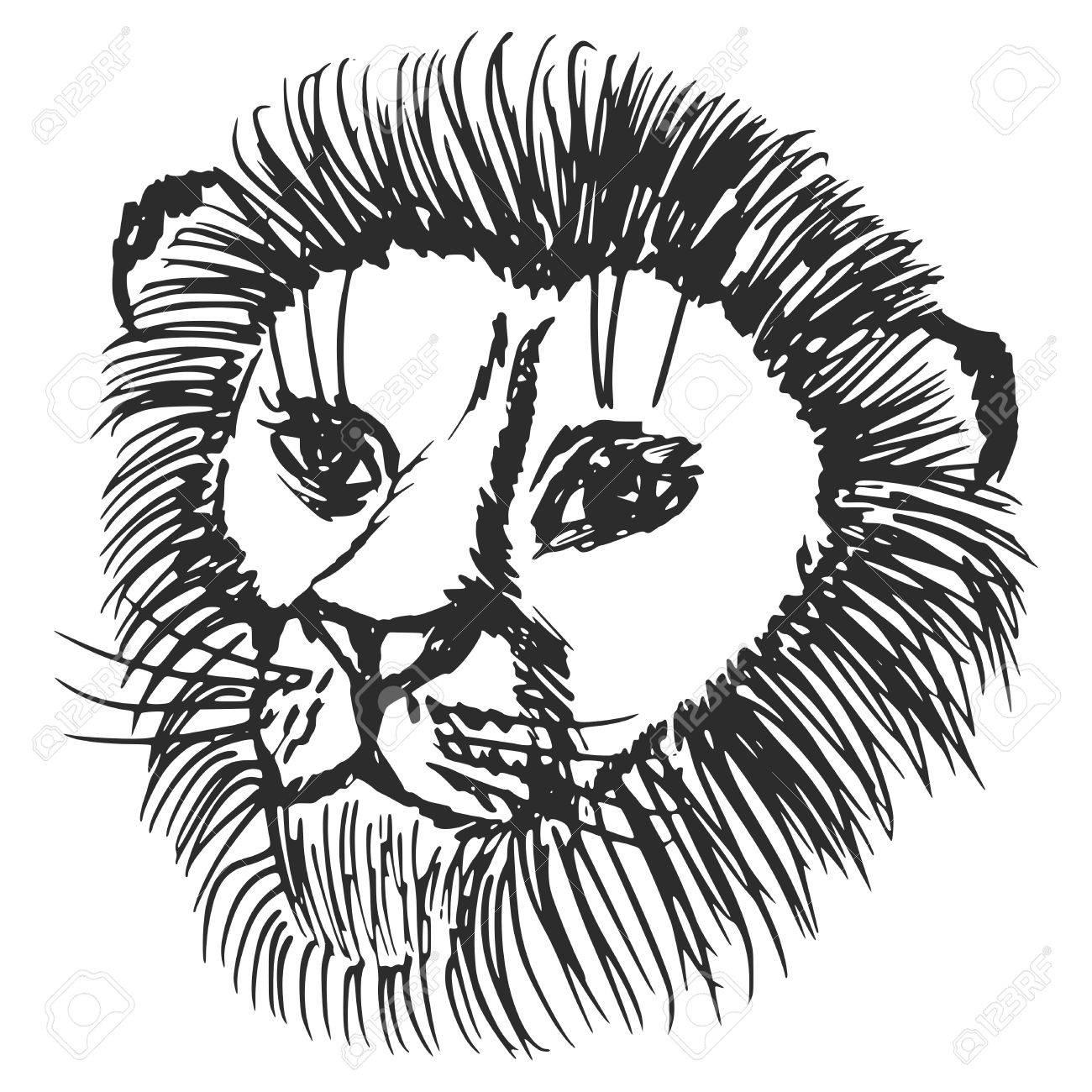 1300x1300 Hand Drawn, Sketch, Cartoon Illustration Of Lion Royalty Free
