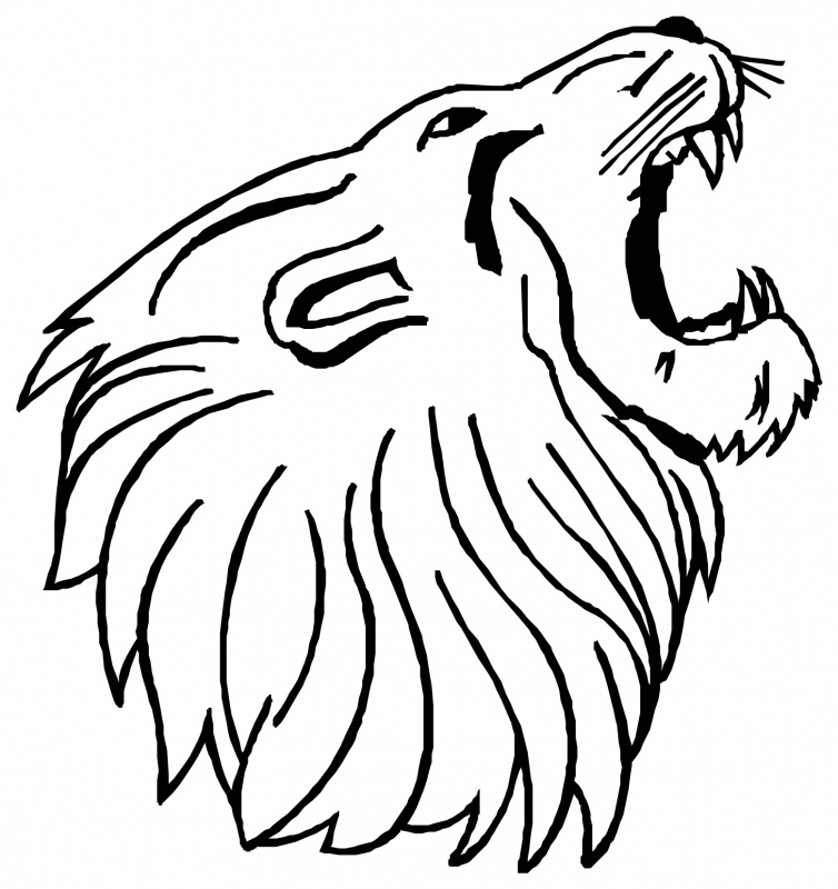 754x800 Lion Face Drawing Clipart