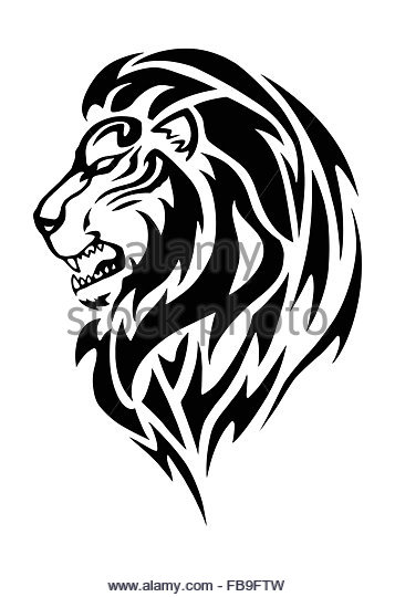 357x540 Lion Roaring Cut Out Stock Images Amp Pictures