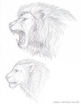 272x350 Lion Sketches By Emryswolf Male Poses Lion Sketch