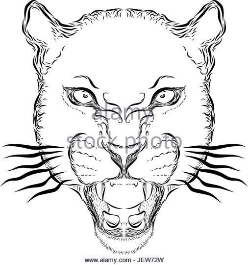 506x540 Roar Stock Vector Images