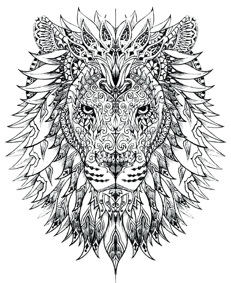 736x901 Lion Head Coloring Pages Lion Head Drawing Add Photo Gallery Lion