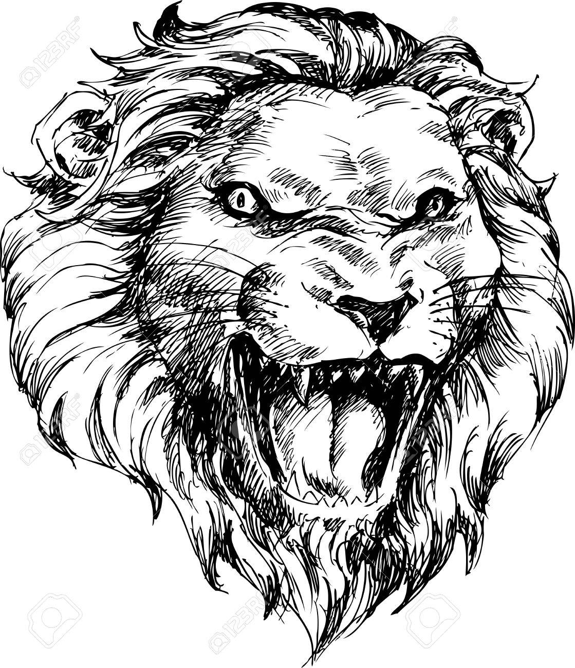 1119x1300 Lion Head Hand Drawn Royalty Free Cliparts, Vectors, And Stock