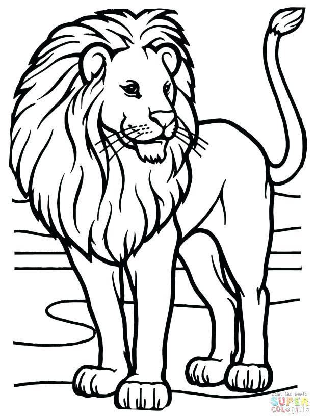 618x824 Lion Head Coloring Pages