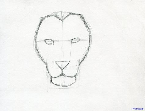 474x363 How To Sketch A Lion Step 6 Animals~ Doodle Amp Draw