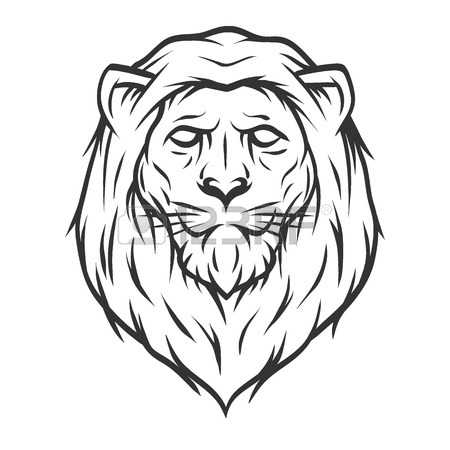 450x450 Lion Head. Line Art Style Vector Illustration. Royalty Free
